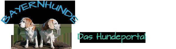 Bayernhunde Logo